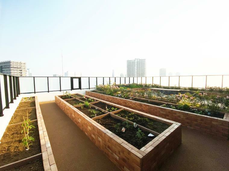 ハーベストガーデン 最上階には家庭菜園コーナーがございます。トマトやナス、バジルなどが植えられており、取れたてのトマトが食卓に並ぶことがあるかもしれません。空中庭園で農業体験ができる憩いの空間です。