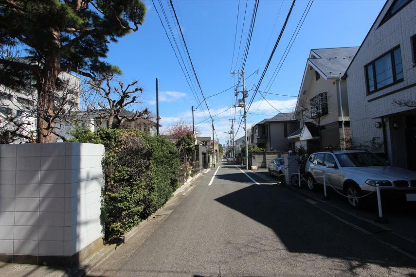 周辺の街並み 前面道路