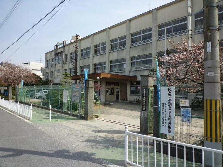 中学校 周辺 藤井寺市立藤井寺中学校