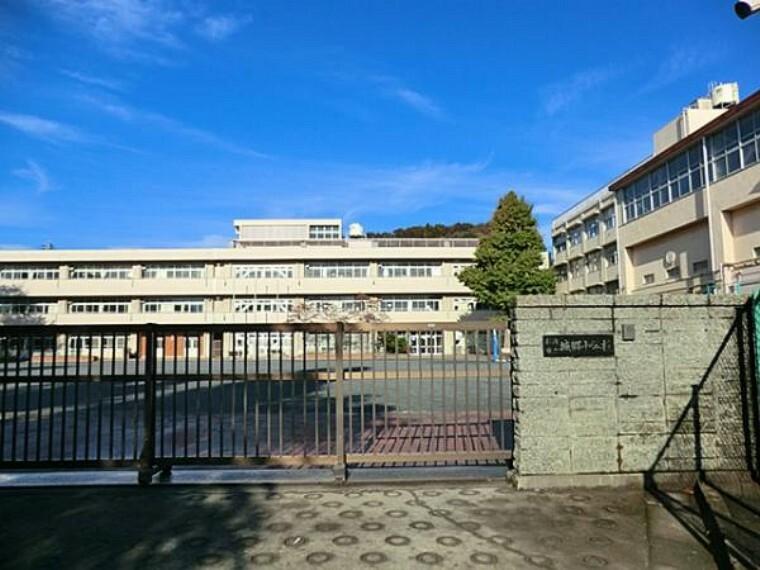 小学校 横浜市立城郷小学校 370m
