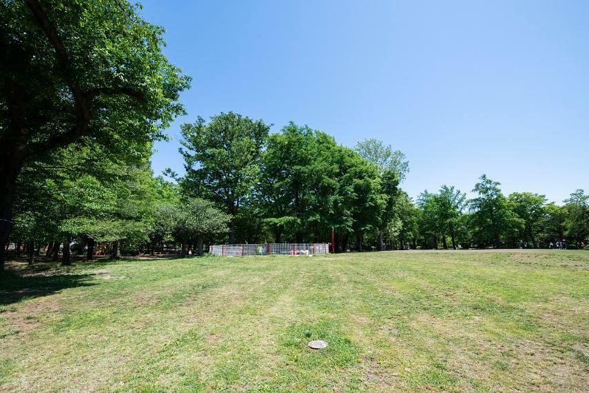 公園 広大な敷地の井草森公園