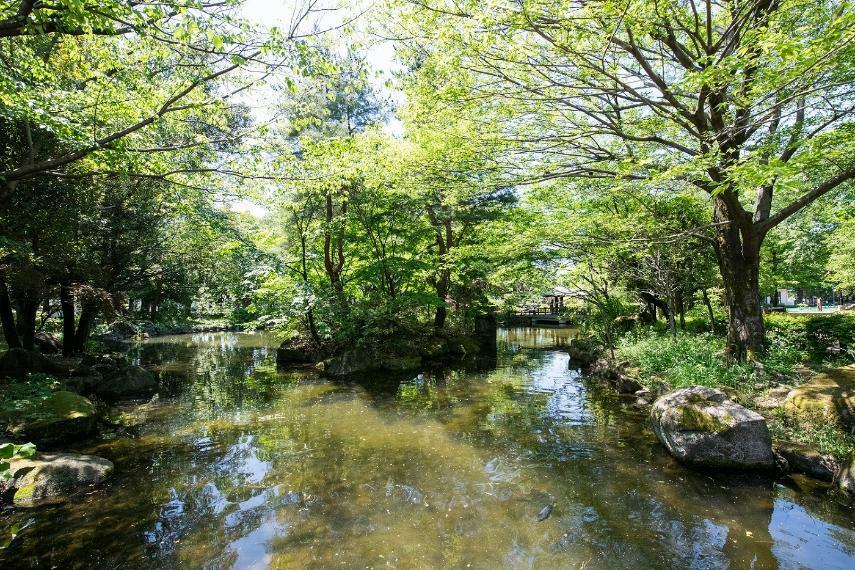 公園 物件より徒歩3分の井草森公園