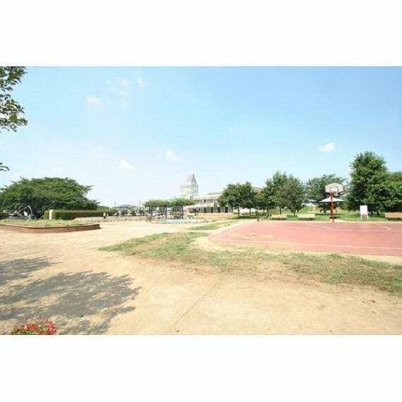 公園 神山公園