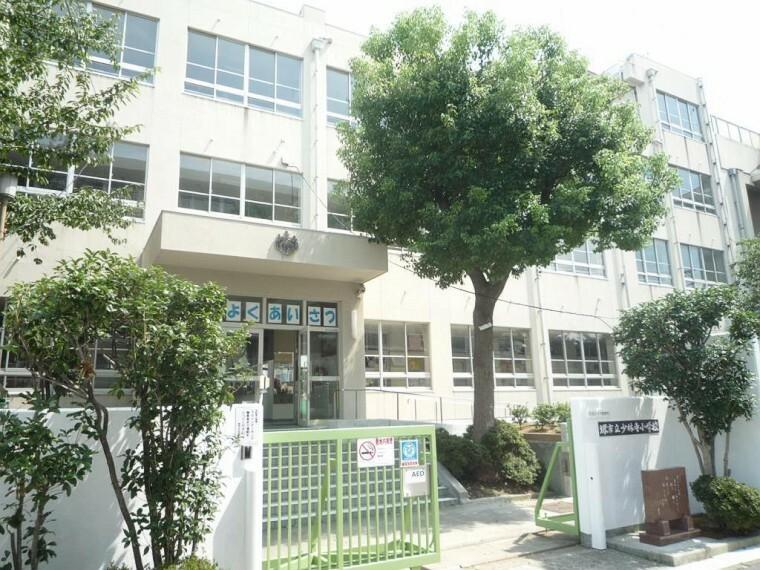 小学校 周辺 堺市立少林寺小学校