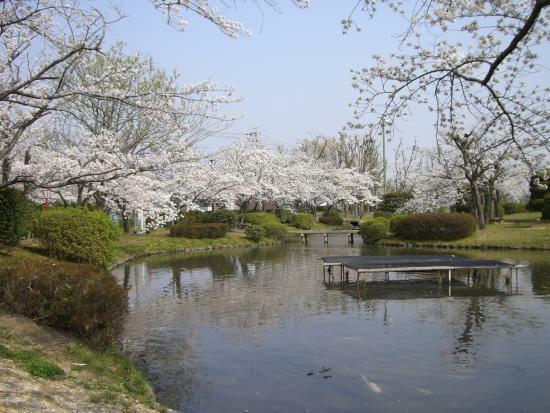 公園 三好公園 春には桜、夏には紫陽花、秋には紅葉も楽しめ忙しい日々のリフレッシュポイントです。