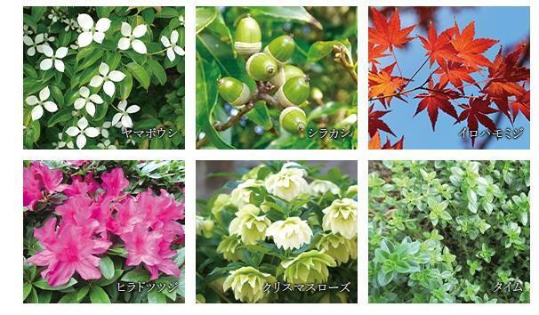 現況外観写真 <四季を華やかに彩る植栽計画> 周辺環境との調和、そして建物デザインとの呼応に配慮した植栽をプランニング。四季折々に美しい表情を演出する花木を散りばめ、安らぎと潤いを与える景観を成しています。