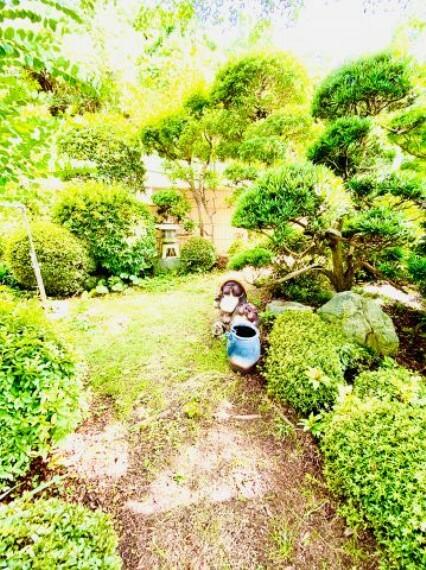 庭 緑豊かな庭です。