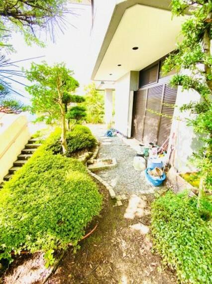 庭 1階玄関口から庭にかけて植栽もあります。