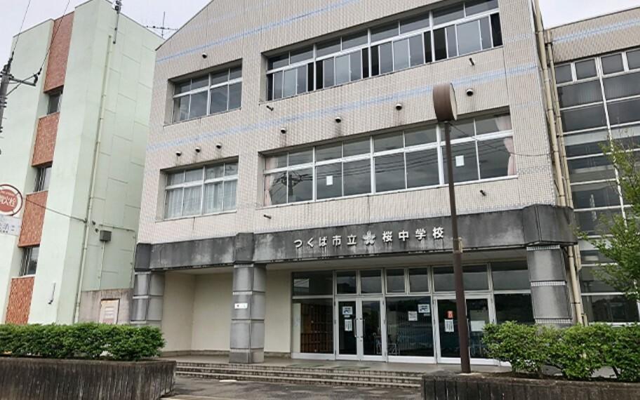 中学校 桜中学校