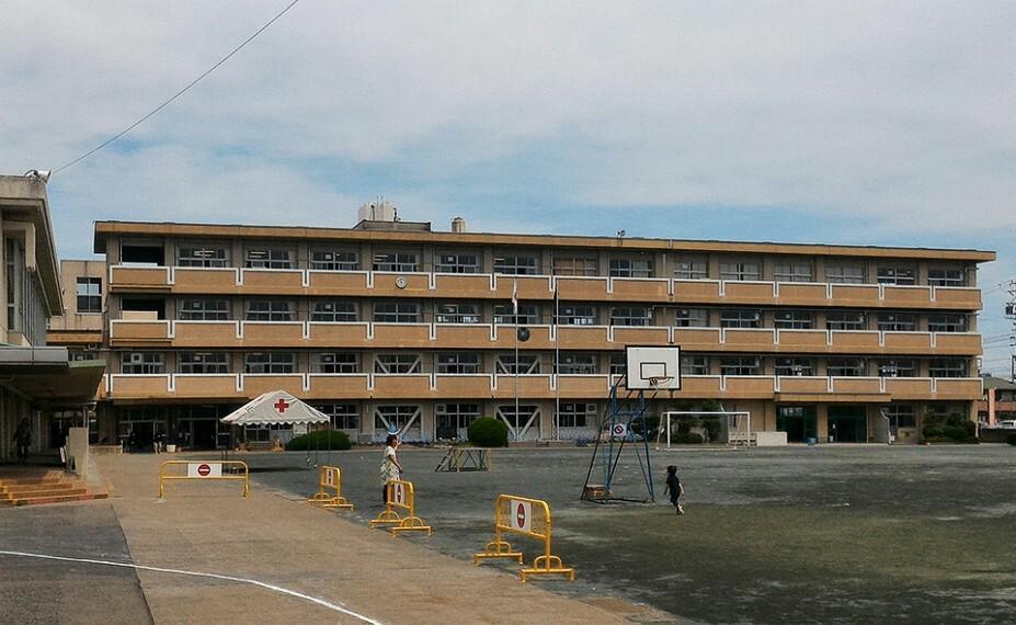 小学校 小信中島小学校まで約320m