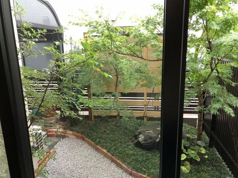 庭  お庭付きです。すぐ近くで緑を感じられるのは贅沢ですよね