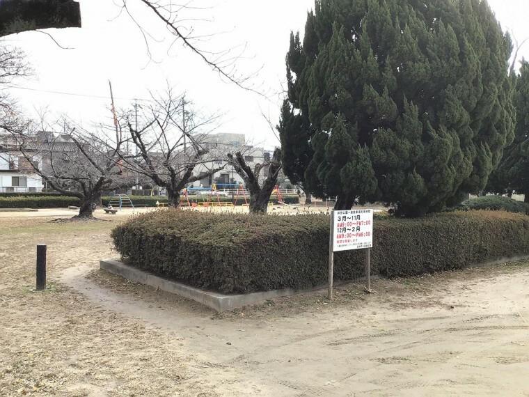 公園 井田公園まで約582m