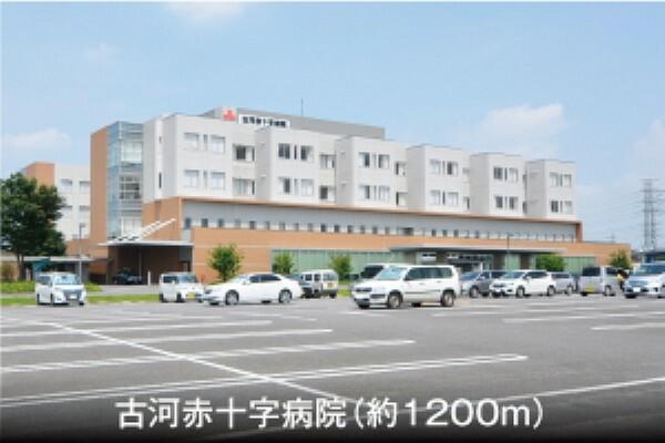 病院 (徒歩15分)。200病床数を有する総合病院です。