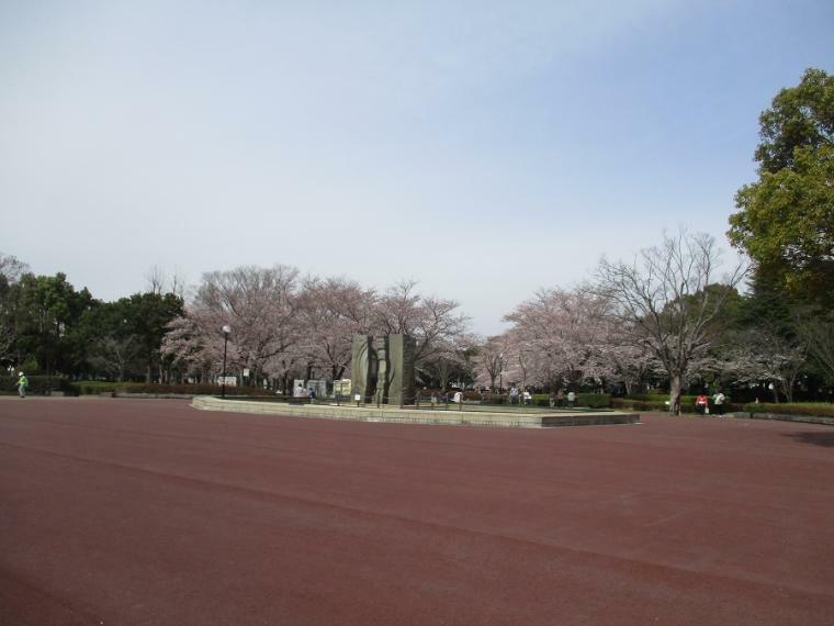 公園 立沢公園