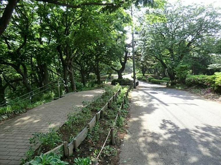 公園 神の木公園