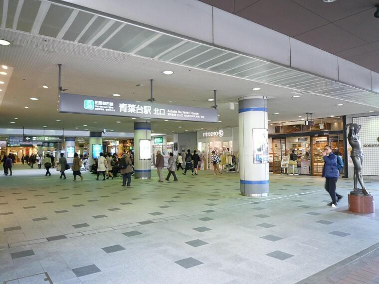 青葉台(田園都市線の急行停車駅。急行利用で「渋谷」駅へ約25分!半蔵門線乗り入れで「大手町」駅へもダイレクトアクセス )