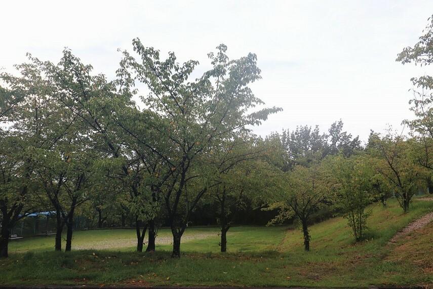 公園 相生山緑地