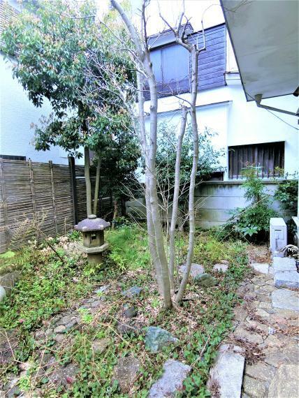 現況写真 敷地南側には広い庭があり、ガーデニングやランチなどにも使用可能です。