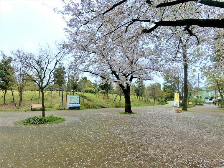 公園 井の頭恩賜公園南西側入り口まで徒歩3分になります。休日のウォーキングや散歩が楽しくなる立地です。
