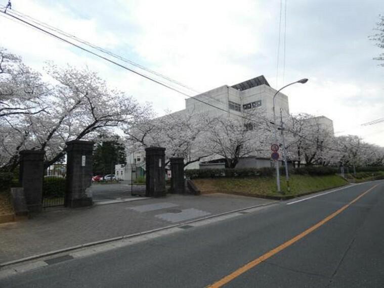 中学校 青陵中学校まで徒歩約17分。(約1300m)