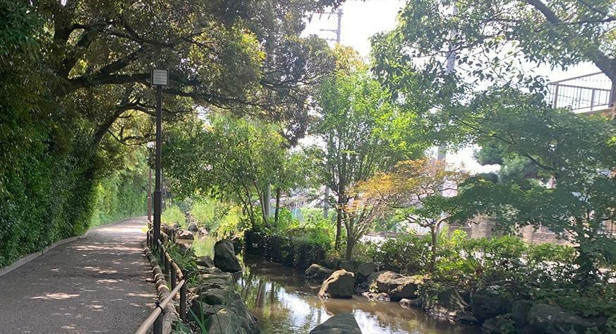 公園 一之江境川親水公園