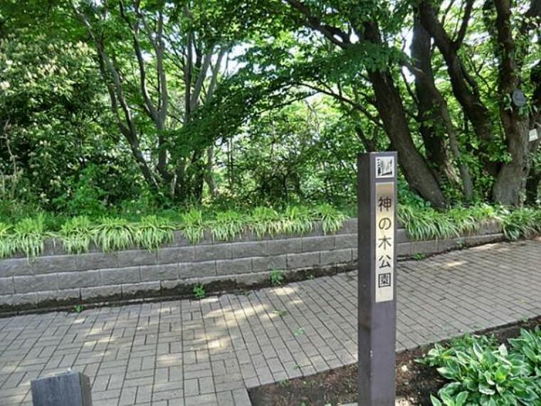 公園 神の木公園  約1670m