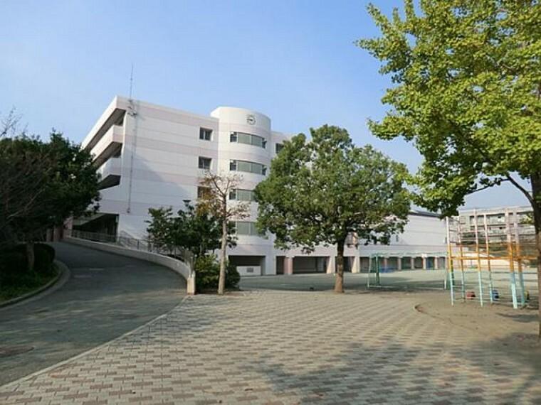 小学校 横浜市立西が岡小学校 約1100m