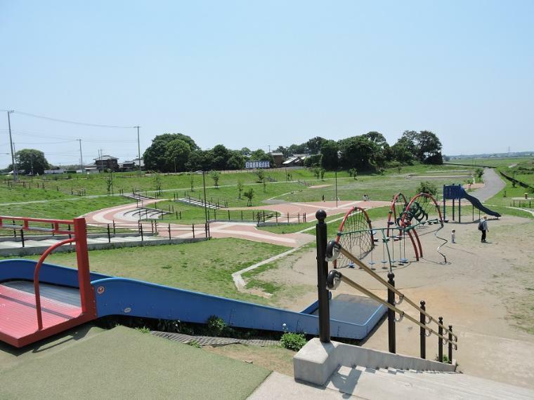 公園 みらい平さくら公園