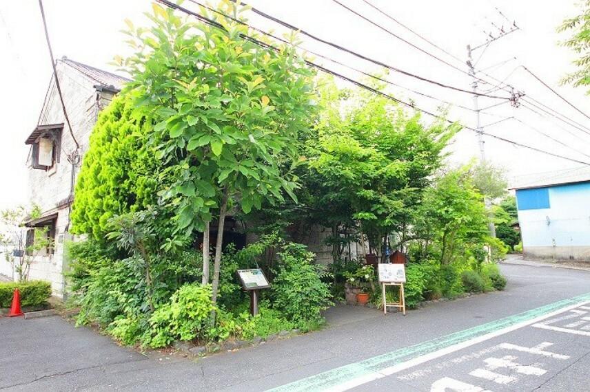 繭蔵(和食カフェレストラン)