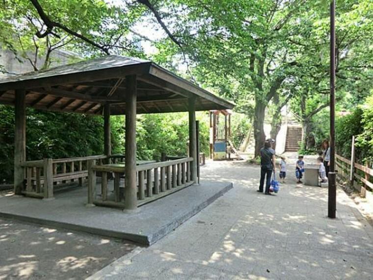 公園 たぬき山公園
