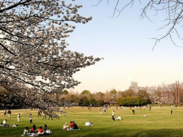 公園 城北中央公園:お子様と一緒に遊べる公園が徒歩8分!(599m)