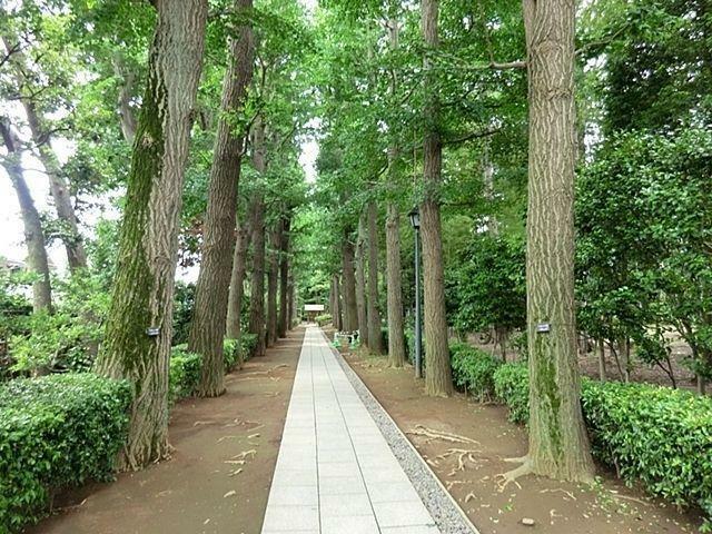 公園 大田黒公園 徒歩13分。