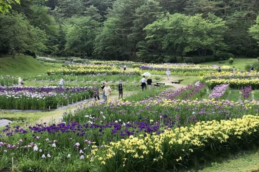 公園 五十公野公園まで1500m(徒歩で19分)お子様の遊具も豊富です。季節には綺麗なお花が咲きます。散歩に丁度よい距離ではないでしょうか。