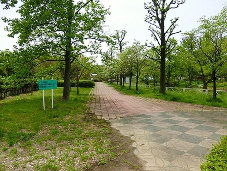 公園 恩廻公園 距離約1100m