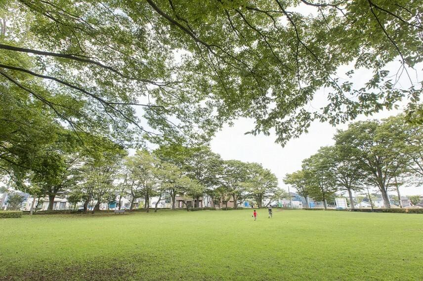 公園 竹園サンパーク公園(約40m/徒歩 1分)2015年9月撮影