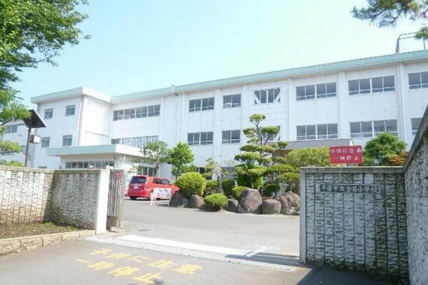 小学校 平塚市立金目小学校 徒歩10分(約800m)