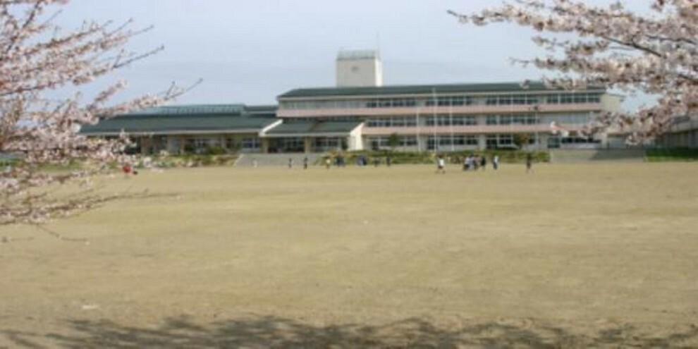小学校 青山小学校 徒歩10分(776m)