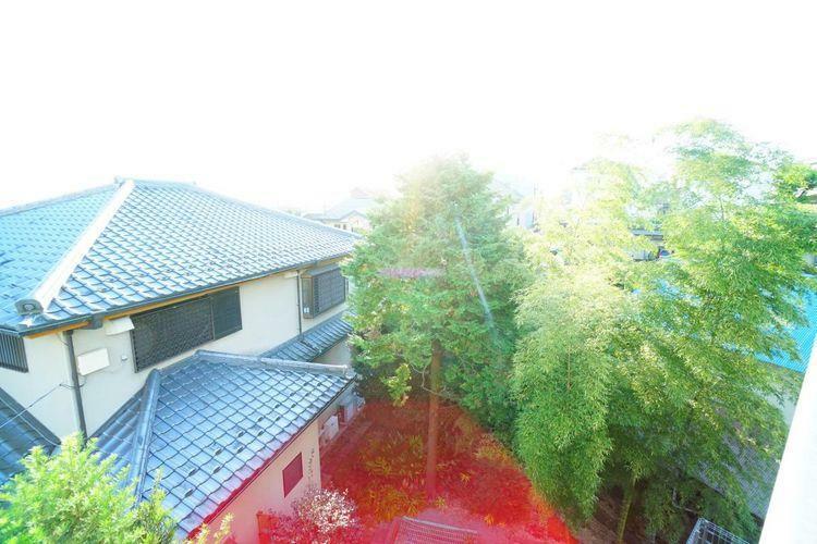 眺望 低層の住宅が多いエリアですので、窓からの景色もスッキリと開放的ですね。