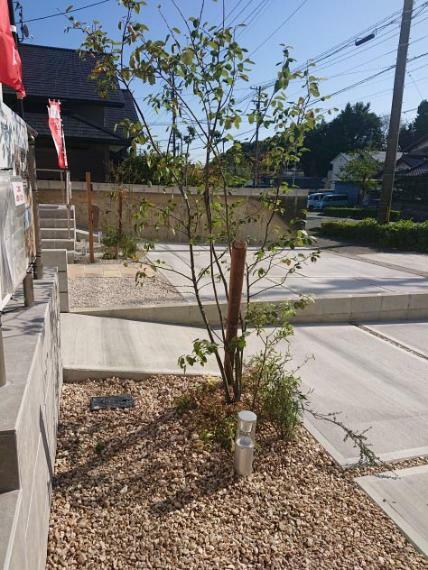 植栽施工例 GAREは植栽付きです!後々アレンジしやすいように作りこみすぎない植栽となっています(^^)