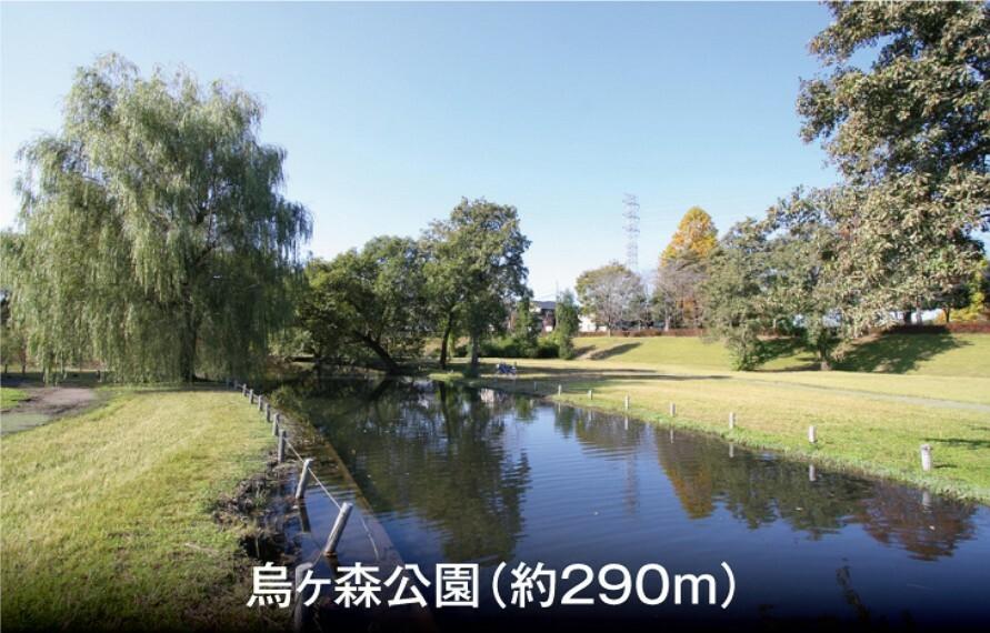 公園 (徒歩4分)。冬には薬師ヶ池に白鳥が飛来するなど、自然豊かな親水公園です。