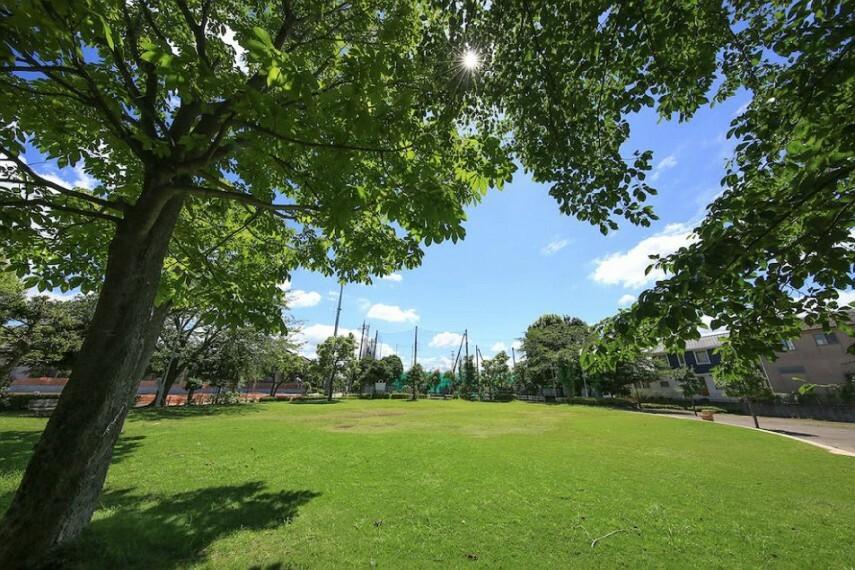 公園 池の上第一児童公園 徒歩1分