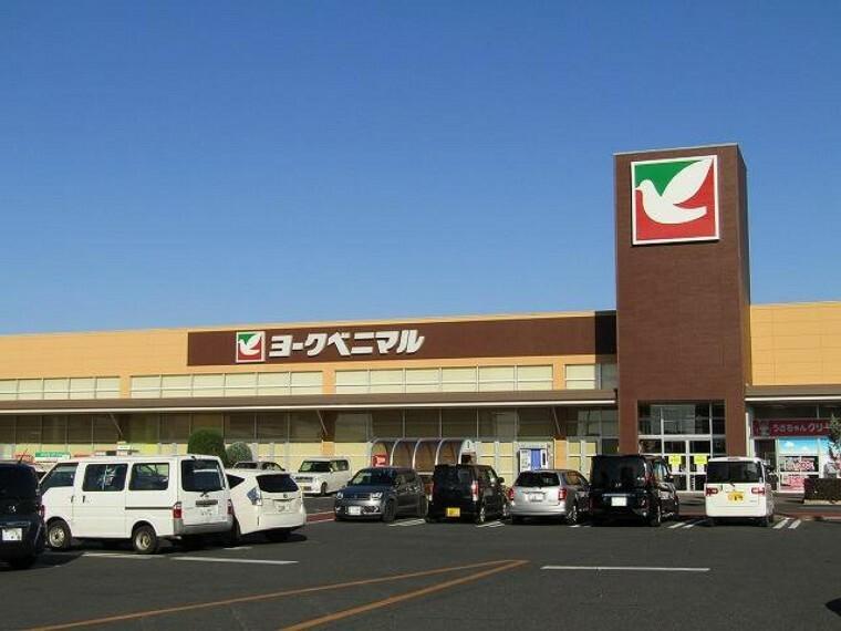 ショッピングセンター ヨークタウン赤塚