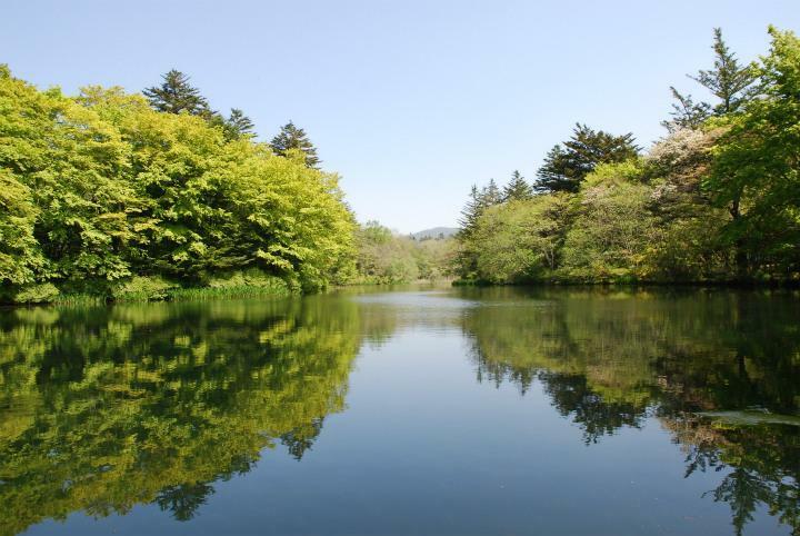 公園 雲場池