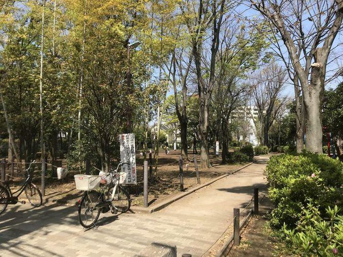 公園 緑地公園