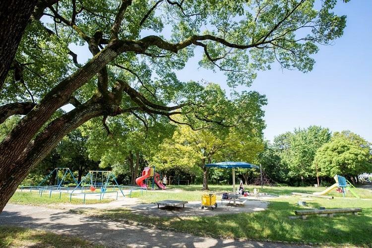 公園 鹿子公園 遊具施設や自動球戯場、デイキャンプのある公園。