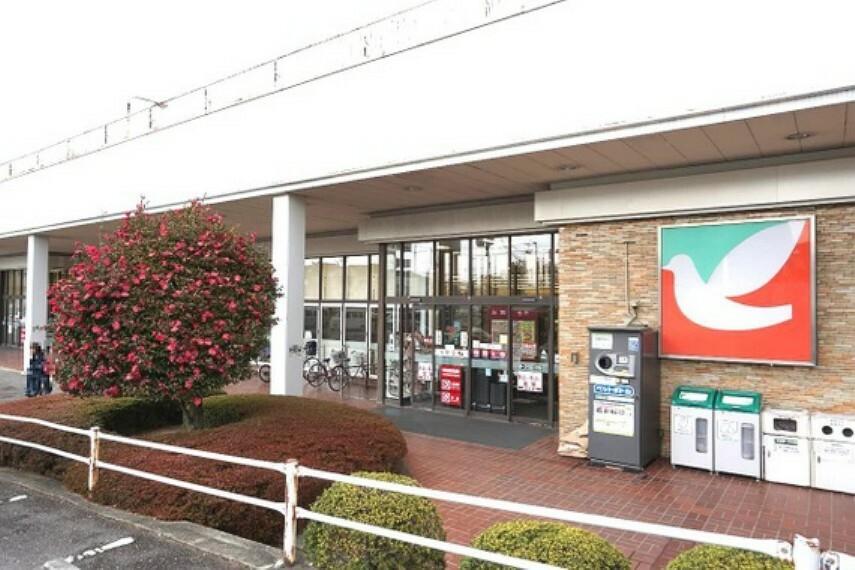 ショッピングセンター ヨークベニマル菜根店まで徒歩約10分です。