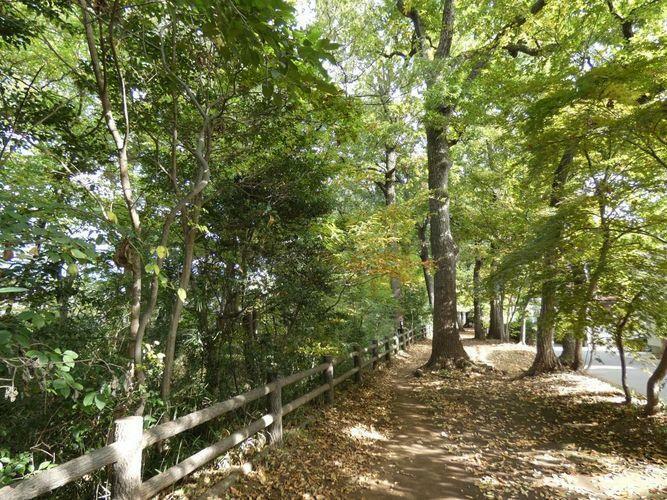 《緑豊かな街》 住宅からすぐの玉川上水沿いは緑豊かな緑道で、お散歩するのにとても気持ちのいい道です