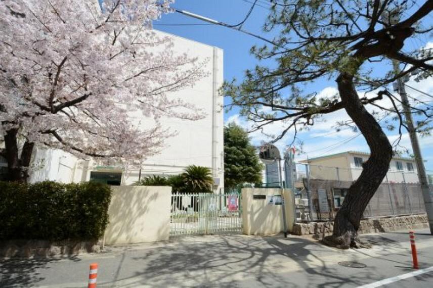 中学校 【中学校】神戸市立御影中学校まで1670m