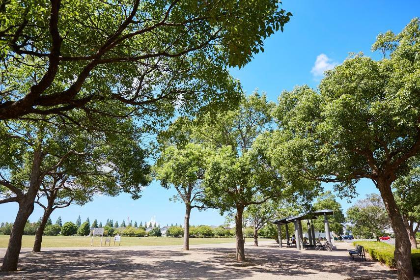 公園 牧の原公園