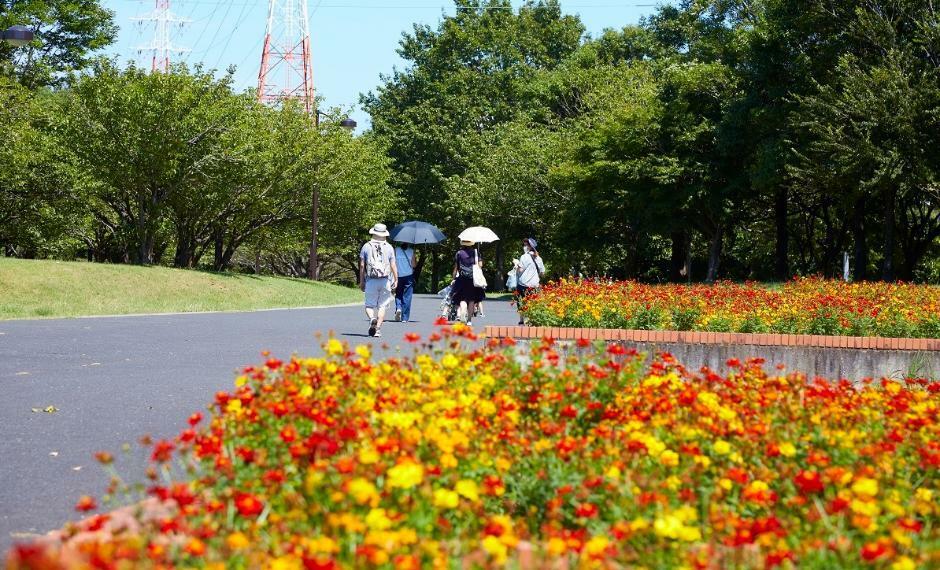 公園 千葉県立北総花の丘公園